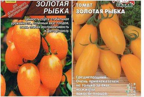 Характеристики и описание на сорта доматена златна рибка, нейната продуктивност