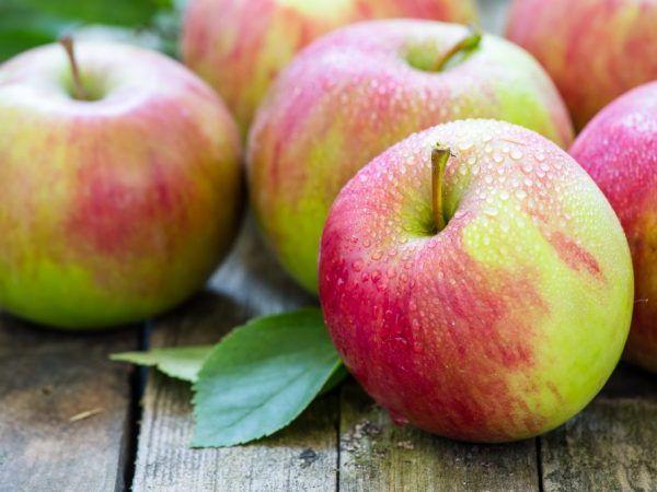 Как да съхранявате ябълки - полезни съвети