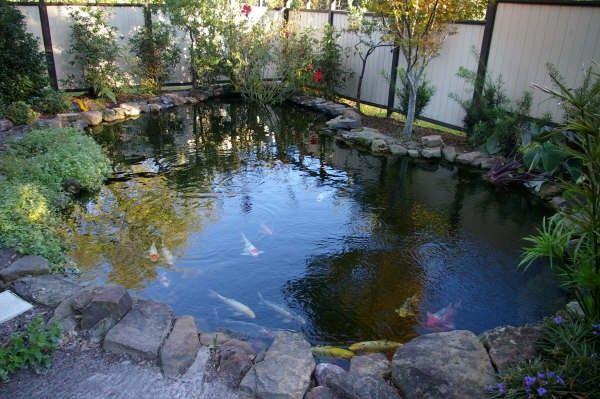 Как да направите езерце с риба със собствените си ръце