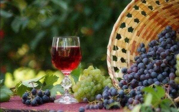 Na prípravu vínnych kvasníc je vhodné hrozno akejkoľvek odrody