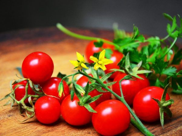 Gombíky paradajky