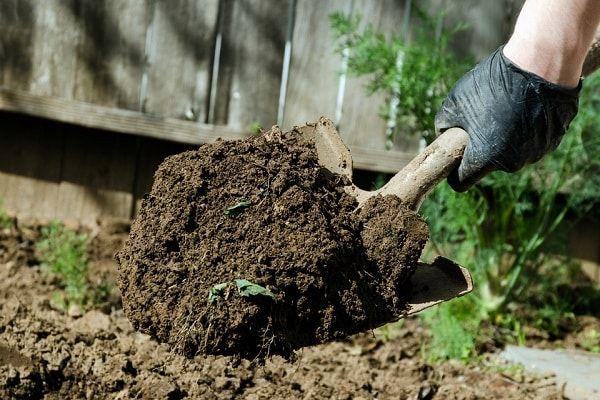 kvapkať do pôdy