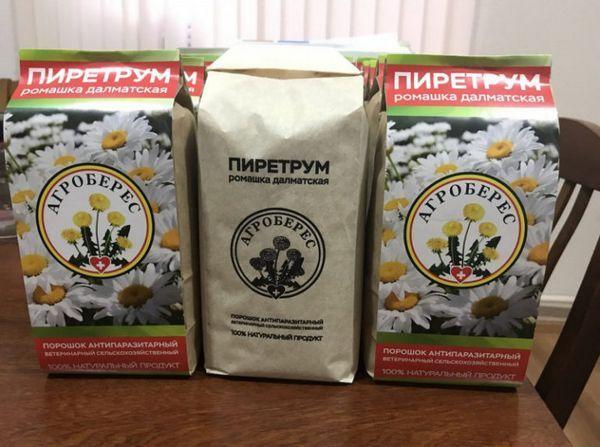 Пиретрум (насекоми на прах)