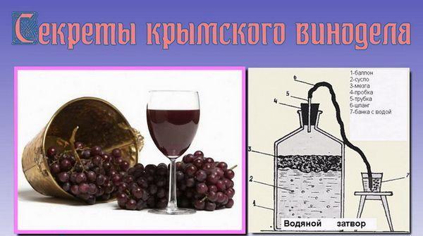 рецепта за гроздово вино